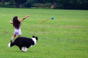 child-with-dog-4297149_1920-1